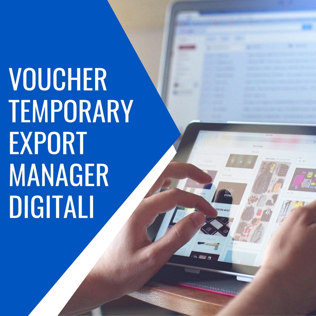 voucher temporary export manager digitali